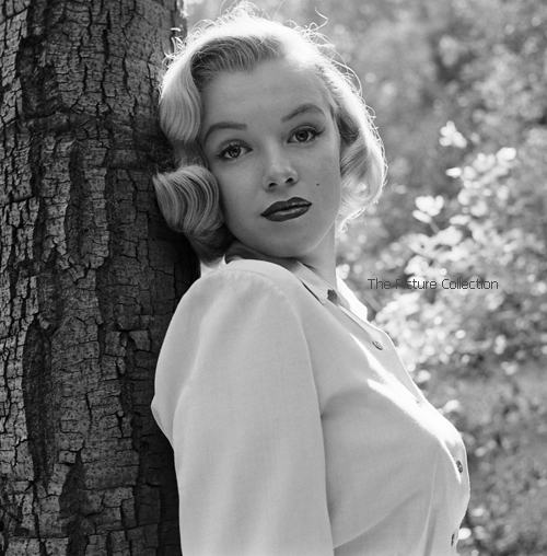 14986886 Edward Clark (Marilyn Monroe) 1950 - THe Picture Collection